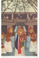 Missouri St Louis Zoo Animal Training Lions King Leo - St Louis – Missouri