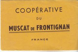 Coopérative Du MUSCAT De FROTIGNAN - Papel Secante