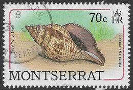 Montserrat SG764 1988 Sea Shells 70c Good/fine Used [38/31692/1D] - Montserrat