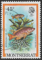 Montserrat SG496 1981 Fishes 45c Good/fine Used [9/11132/1D] - Montserrat