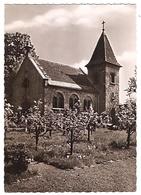 Kirchzarten - Alte Evangelische Kirche (1018) - Kirchzarten