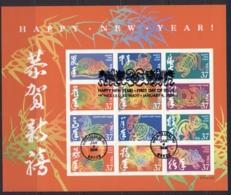 USA 2005 Sc#3895 Chinese New Year Double Sided Sheetlet FU - United States