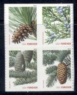 USA 2010 Fir Trees Blk4 MUH - United States