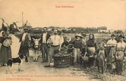 111218 - 66 LES CORBIERES - Retour Des Vendangeurs Dans Les Corbières - Vin Vignoble Paysan âne Scène Champêtreê - Frankreich
