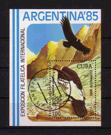 489a * CUBA * BLOCK GEIER ARGENTINA 85 * GESTEMPELT **!! - Adler & Greifvögel