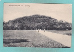 Old Post Card Of The Great Banyan Tree,Calcutta,Kolkata, West Bengal, India.J19. - India
