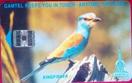 Kingfisher 125 Units - Gambia