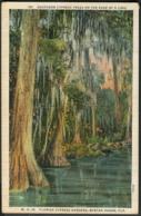 FL - Winter Haven -  Florida Cypress Gardens - United States