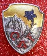 Ski Insigne CAF Version Soignée Club Alpin Français état Luxe Sans Fourbisseur Dos Scanné Franco/port Europe - Sports D'hiver