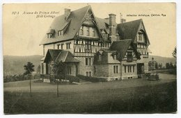 CPA - Carte Postale - Belgique - Spa - Avenue Du Prince Albert - Hill Cottage - 1910 (SV6600) - Spa