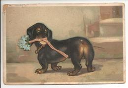 Hond Met Bloem - Honden