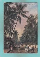 Old Post Card Of Village Scene,Bombay,Mumbai, Maharashtra, India,J20. - India