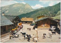 Les Lindarets: CITROËN 2CV - CHÈVRE - RENAULT DAUPHINE - Alt. 1.470 M. - (Hte-Savoie) - Toerisme