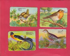 8 Chromos Découpis (2 Scans) éducatifs Légèrement Gaufrés - Les Oiseaux ( Rossignol -rouge-gorge - Pic épeiche Etc...) - Animaux