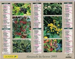 Calandrier Almanach De La Poste, Champigon, Baies Sauvages - Kalender