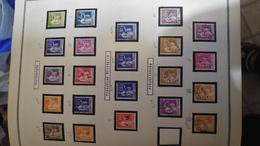 Anciens Timbres Dfrançais Neuf Sur Charniere - Collections (en Albums)