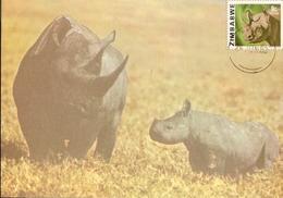 Zimbabwe & Maxi Card, African Wild Life, Rhinoceros And Calf, Diceros Bicornis, Harare (167) - Zimbabwe (1980-...)