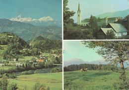 564  AK SLO - RADOVLJICA - Slowenien