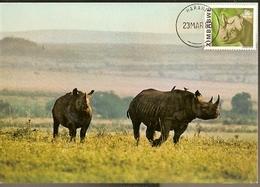 Zimbabwe & Maxi Card,  East African Wild Life, Black Rhinoceros, Diceros Bicornis Harare (191) - Zimbabwe (1980-...)