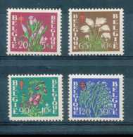 D - [603375]BELGIQUE 1950 - N° 834/37,  Antituberculeux, Fleurs Diverses. - Végétaux