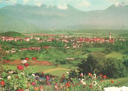 566  AK SLO - RADOVLJICA - Slowenien
