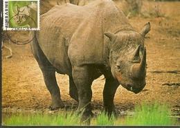 Zimbabwe & Maxi Card,  African Wild Life, Black Rhinoceros, Diceros Bicornis Harare (18) - Zimbabwe (1980-...)