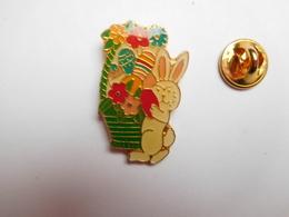 Beau Pin's , Lapin , Rabbit - Animals