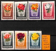 NB - [815088]Hongrie 1962 -  Fleurs, Rose, Nature - Roses