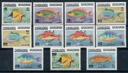 1974-JORDAN-FISHES-POISSONS-M.N.H.-LUXE ! - Jordanien