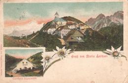 594  AK SLO - VISARJE - Slowenien