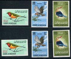 1964-JORDAN-BIRDS-OISEAUX-  VERY RARE SETS-M.N.H.-LUXE ! - Jordan