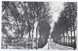 CPSM 51 VITRY LE FRANCOIS Les Indes - Vitry-le-François