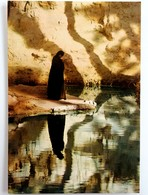 #420   Tunisian Man In Ascetic Clothing, Hieratism - TUNISIA, North Afrika - Postcard - Afrique