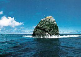 1 AK Rockall Island * Felseninsel Im Nordatlantik Beansprucht Von Großbritannien, Island, Irland Und Den Färöer Inseln - Ansichtskarten