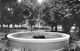 ¤¤    -   ALGERIE   -   SEBDOU   -  Le Jardin Public  -   ¤¤ - Algérie