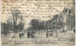 LIèGE   Boulevard D' Avroy. - Luik