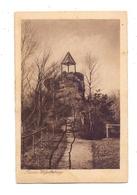 """6783 DAHN - NOTHWEILER, Ruine Wegelnburg, Landpoststempel  """"Hinterweidenthal Bahnhof"""", 1923 - Dahn"""