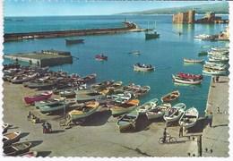 Saïda - Le Port Et Le Château - Liban