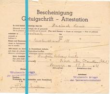 Oorlog Getuigschrift Werbestelle Brugge - Declerck Louis - Assebroek - Deutsche Solvay Werke 1942 - Documents