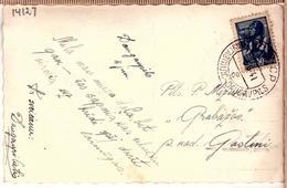 Latvia-Lettland-Postal-Card-stamp-in-Soviet-time-cancel-DAUGAVPILS-E-5-6-1941 - Lettonie