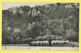 * Han Sur Lesse (Rochefort - Namur - La Wallonie) * (Nels) Chemin De Fer De La Grotte, Mouton, Sheep, Schaap, Rare - Rochefort