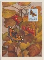 Danemark Carte Maximum 1993 Papillons 1051 - Cartes-maximum (CM)