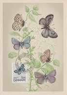 Danemark Carte Maximum 1993 Papillons 1052 - Cartes-maximum (CM)