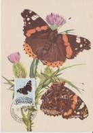 Danemark Carte Maximum 1993 Papillons 1054 - Cartes-maximum (CM)