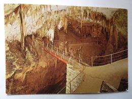 POSTOJNSKA JAMA - Grotte - Caves - Le Pont Russe - Adelsberg - Slovénie
