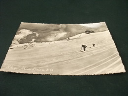 Sci Sciatori Fuori Pista Rifugio Monte Livrio M. 3174 Annullo S. Nicolo Di Valfurva Sondrio - Winter Sports