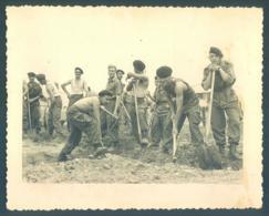 Lot De 11 Photos Militaire Divers - Guerre, Militaire