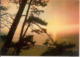 L10K007 - Couleurs Et Lumières De France - Coucher De Soleil Sur La Mer - Yvon - EKB N°3381 - Cartes Postales