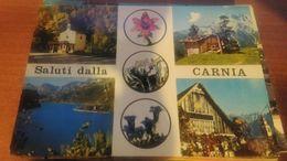 Cartolina: Saluti Dalla Carnia Viaggiata (a32) - Non Classificati