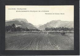 CPA Polynésie Française Océanie Océania Non Circulé Métier - Polynésie Française